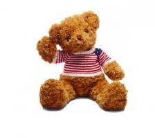 Teddy Bear - 泰迪熊毛绒玩具熊