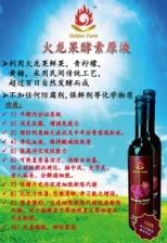 Dragon Fruit Enzyme 500ML