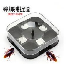 Auto Cockroach and Lizard Trap 蟑螂诱捕器 无毒蟑螂诱饵扑捉器 灭杀蟑螂神器全窝端