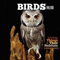 【幼兒科普】生物及棲息地系列:鳥類