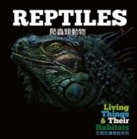 【幼兒科普】生物及棲息地系列:爬蟲類動物