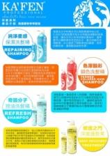 KAFEN Impression Series Shampoo & Treatment