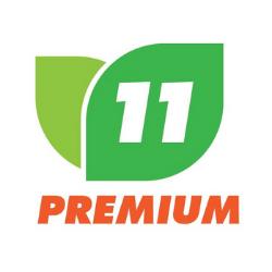 Premium 11 Enterprise