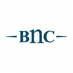BNC Shoes
